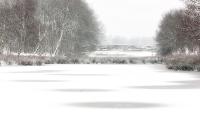 Sneeuwcirkels